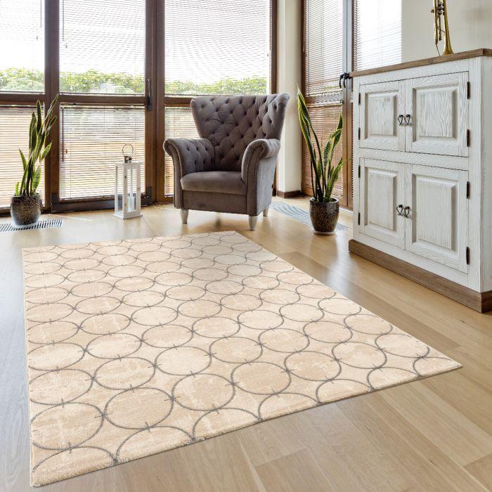 Luxus Wohnzimmerteppich Circle in Grau-Beige M701