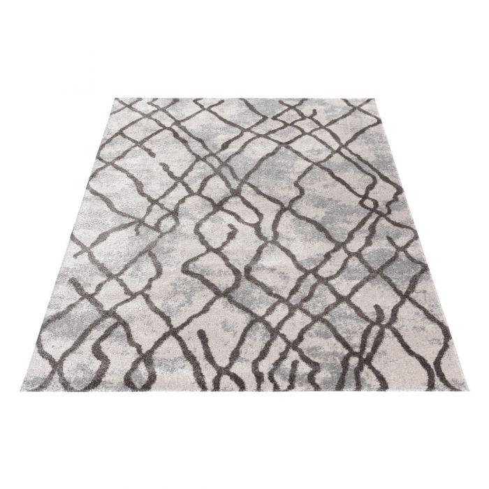 Vintage Teppich Antares Abstrakt Modern Grau Braun A1050