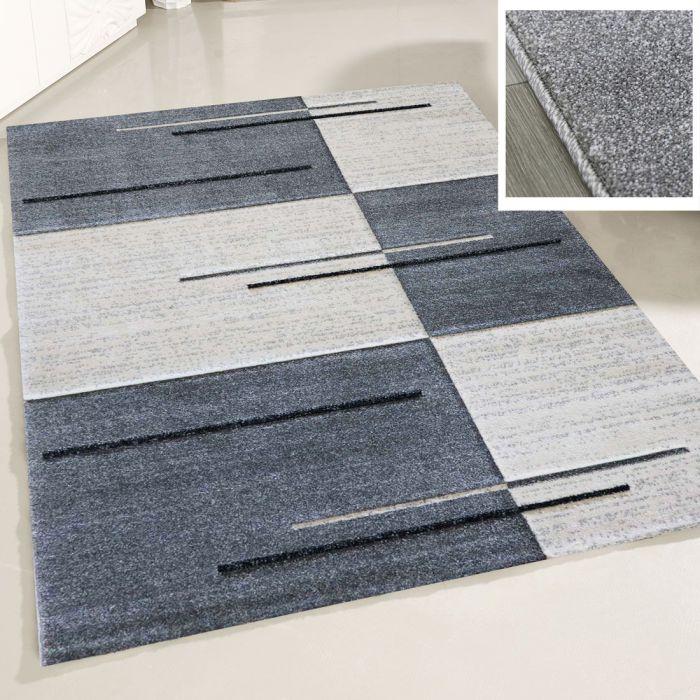 Wohnzimmer Teppich Modern Grau Kurzflor Kariert mit Konturen M7423G